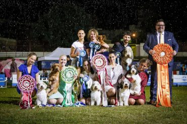 Supreme Baby-Puppy BIS, 3x RBIS, JrBIS, 3rd VBIS in Split 2019